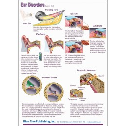 Hearing Computer Software and Chart Set - Ear Disorders Anatomical Chart card two back