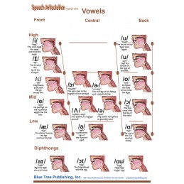 SLP Computer Software and Chart Set - Speech Articulation Anatomical Chart card one back