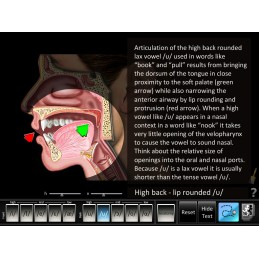 Vowels Front and Back Software