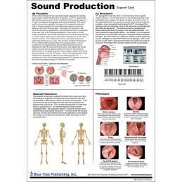 Sound Production Anatomical Chart back