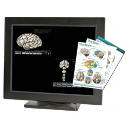 Brain Computer App Chart Tablet Set