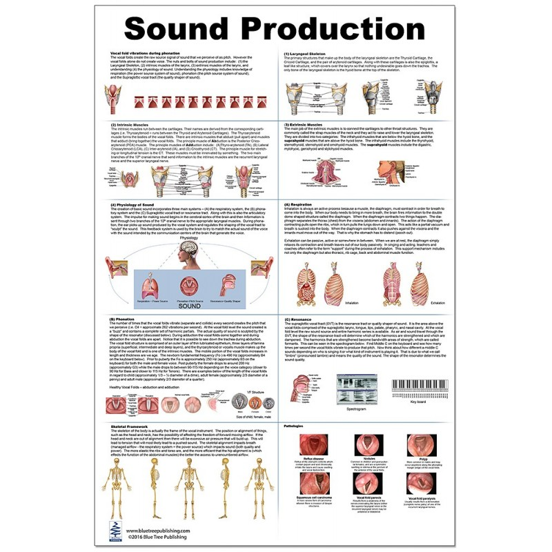 Sound Production Large Poster