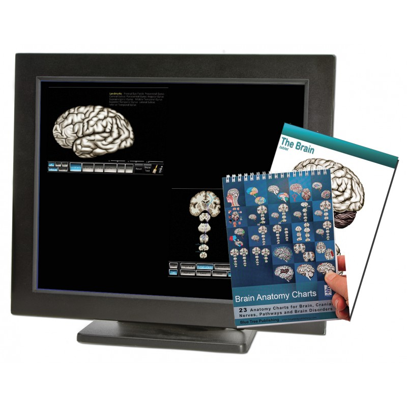 Brain Computer App Flip Charts Tablet Set