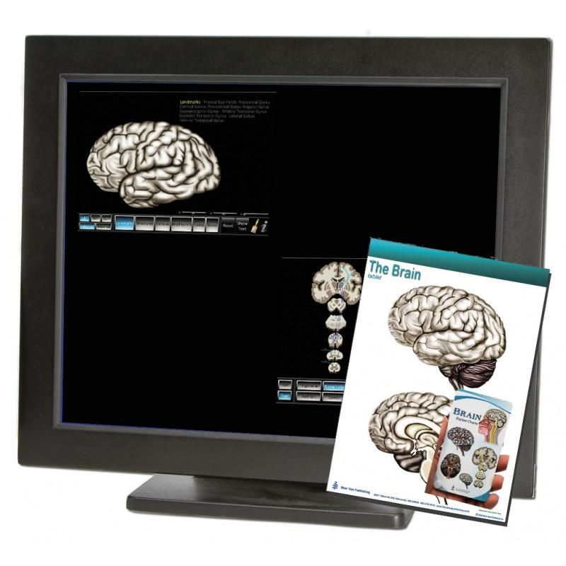 Brain Computer Apps Pocket Charts Tablet Set