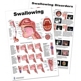 Swallowing Large Poster set