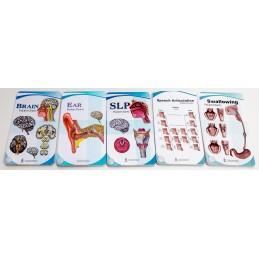SLP Anatomy Five Pocket Charts Set
