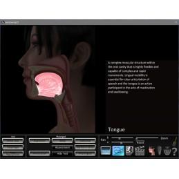 Swallowing App anatomy ID