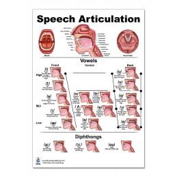 Speech Articulation Regular Poster one