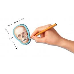 Skull Stick Note dimensions