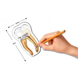 Tooth Stick Note dimensions